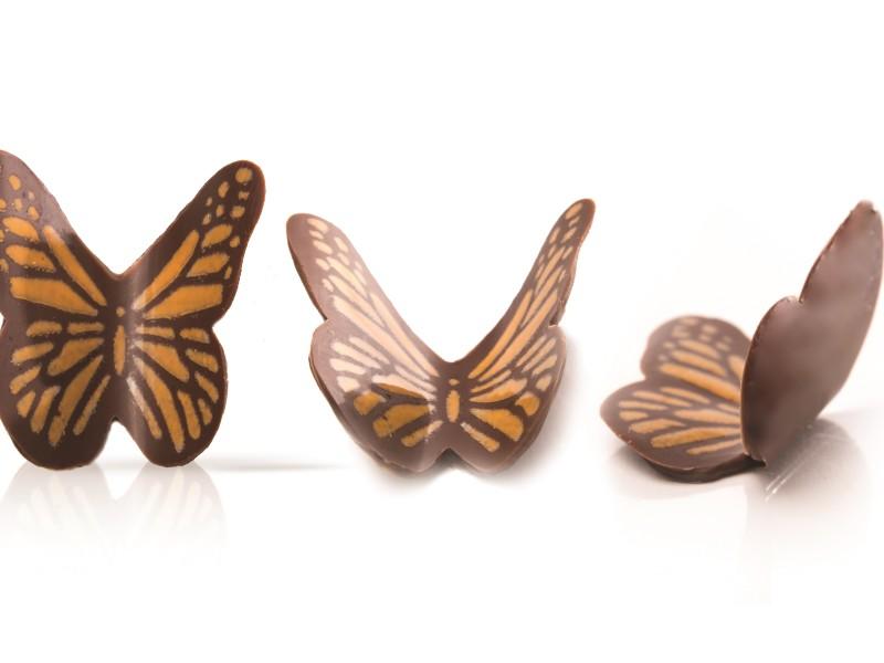 77246 Butterfly